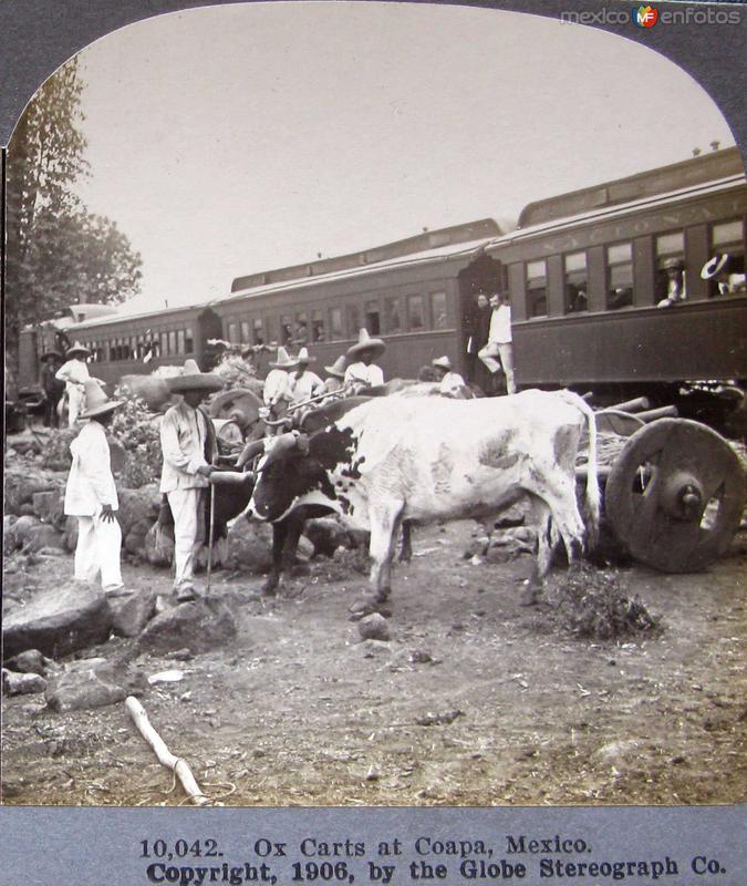Carreta de Bueyes en Villa Coapa Hacia 1909