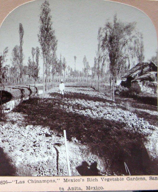 Las Chinampas de Sta Anita Hacia 1900