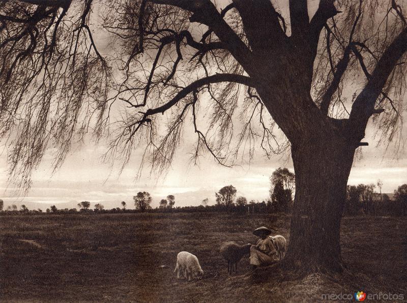 Alrededores de Tepepam (circa 1920)