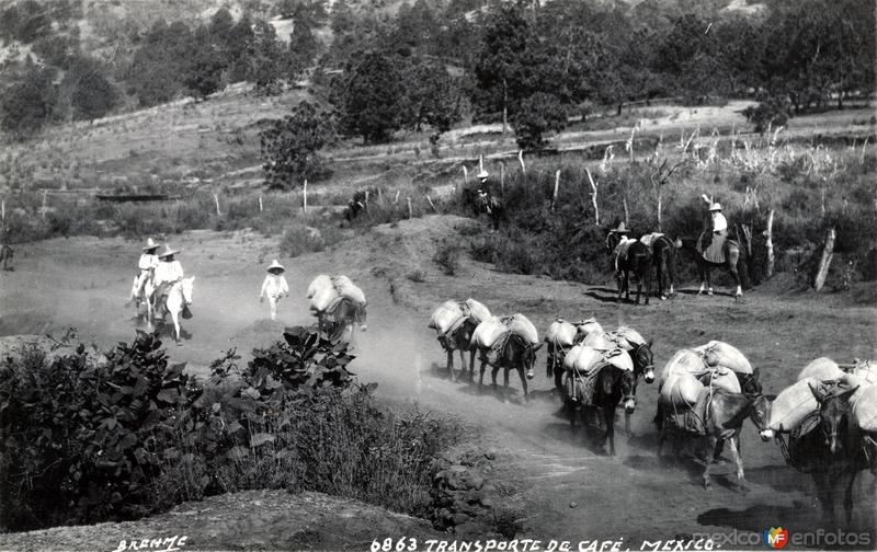 Transporte de mercancías en el interior del país (circa 1920)