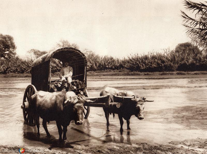 Carro típico cruzando el Río Atoyac (circa 1920)