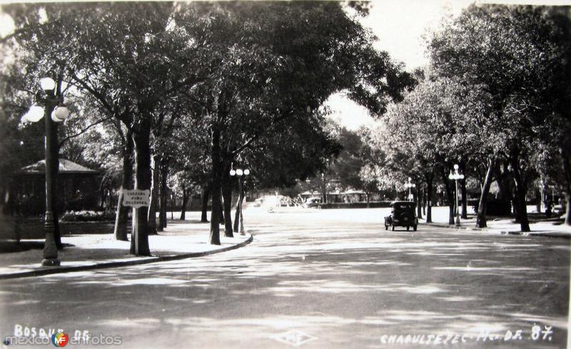 Bosque de Chapultepec Hacia 1930