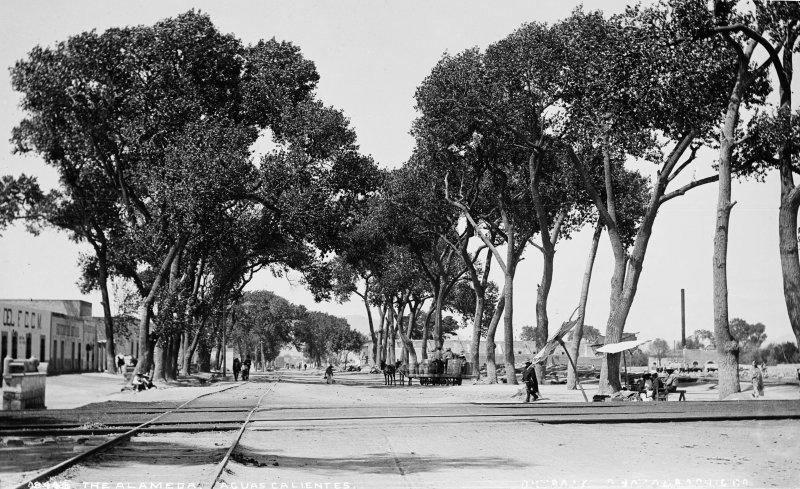 La Alameda (por William Henry Jackson, c. 1888)