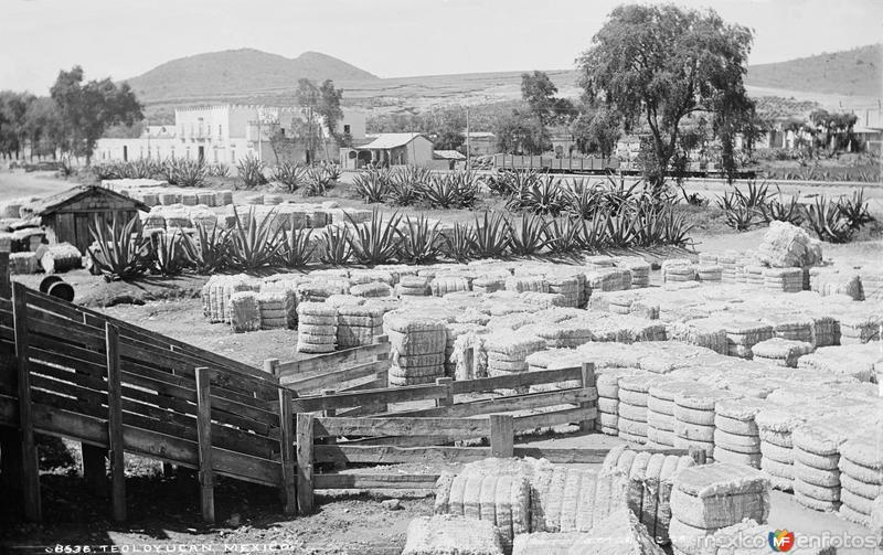 Vista de Teoloyucan (por William Henry Jackson, c. 1888)
