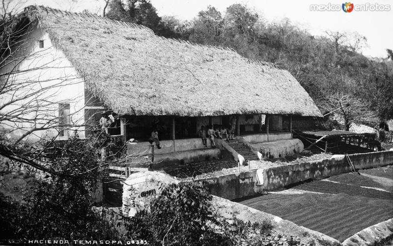 Hacienda en Tamasopo (por William Henry Jackson, c. 1888)