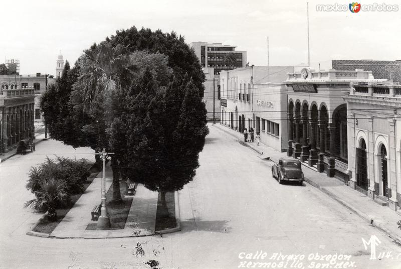 Calle Alvaro Obregón