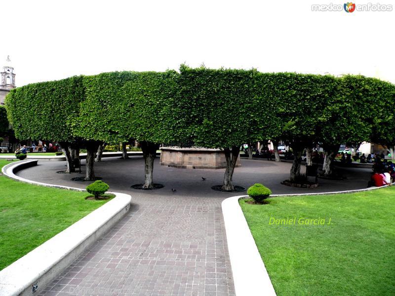 Jardin Principal