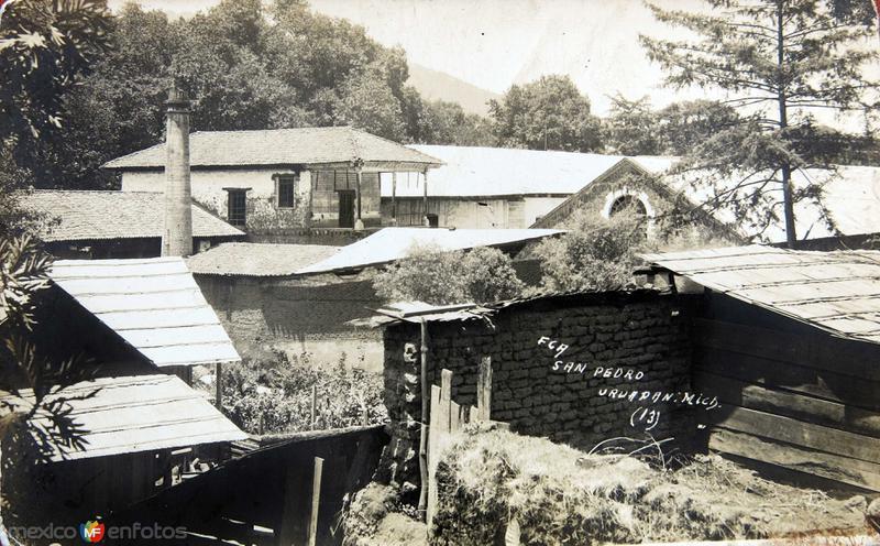 FINCA SAN PEDRO Circa 1930-1950