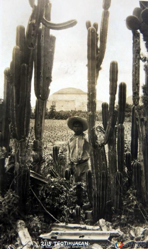 PANORAMA Por el fotografo Hugo Brehme
