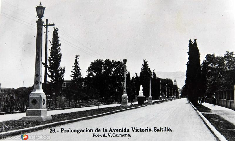 PROLONGACION DE LA AVE. VICTORIA