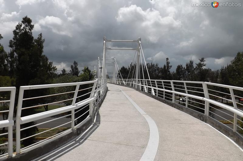 Uno de los puentes del parque lineal. Agosto/2015