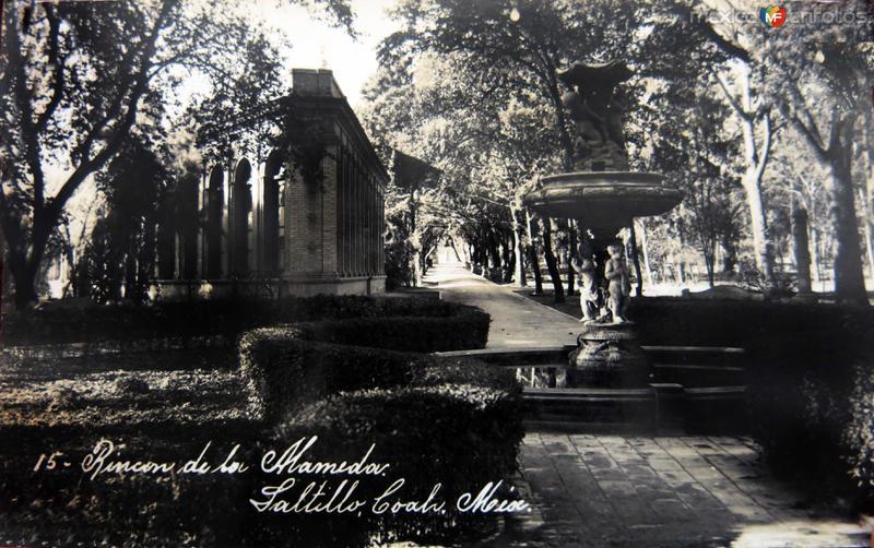 Rincon de la Alameda circa 1930-1950