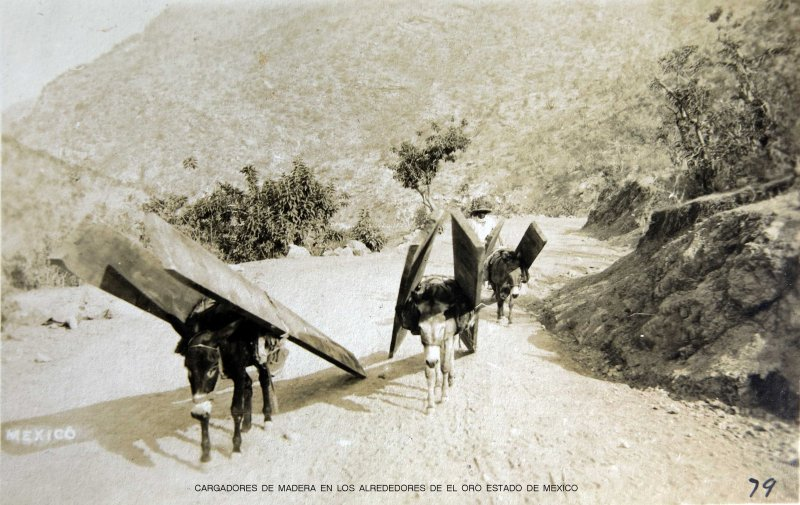 CARGADORES DE MADERA EN LOS ALREDEDORES DE EL ORO ESTADO DE MEXICO