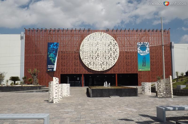 Museo de la Evolución. Febrero/2016