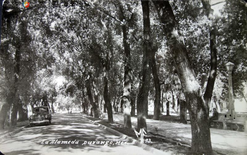 La Alameda Hacia 1930-1950
