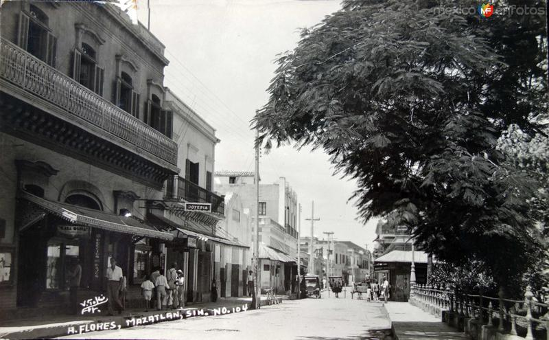 Avenida Flores Panoramica