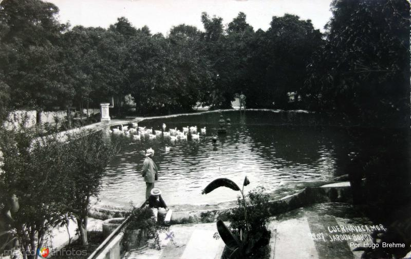 Jardin de La Borda por el fotografo HUGO BREHME