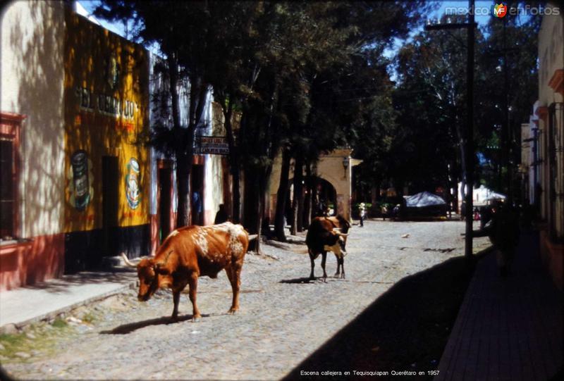 Escena callejera en Tequisquiapan Querétaro en 1957