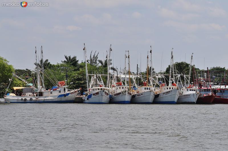Botes pesqueros