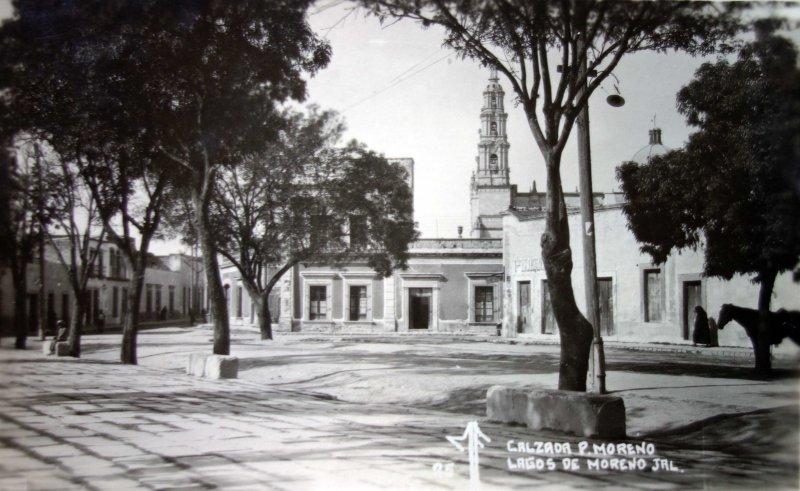 Calzada Pedro Moreno.