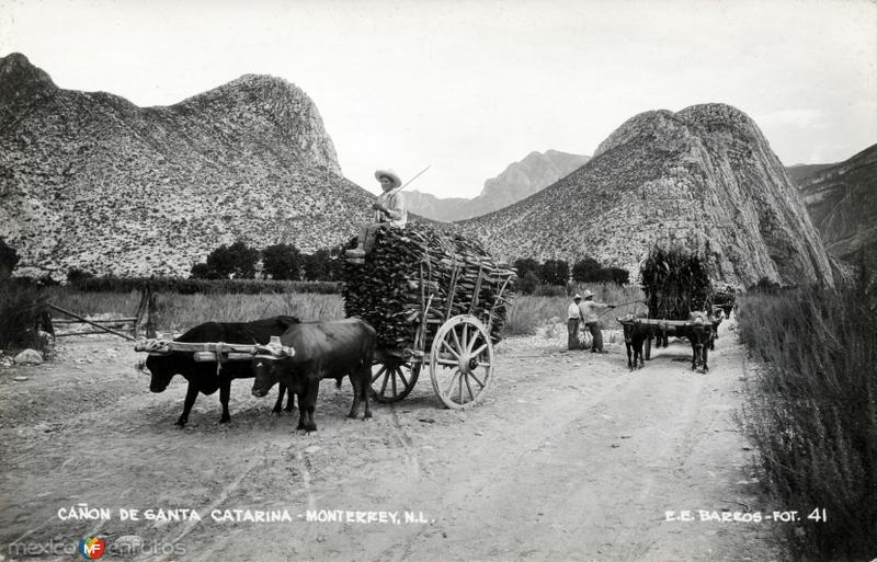 Cañón de Santa Catarina