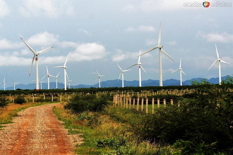 Parque eólico La Venta