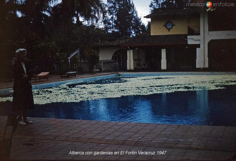 Alberca con gardenias en El Fortin Veracruz (c. 1953).