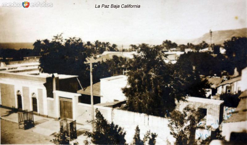 Panorama de La Paz Baja California Fechada el 17 de Enero de 1930