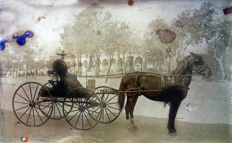 Una plaza con el hacendado presumiento su carruaje de Caballos.