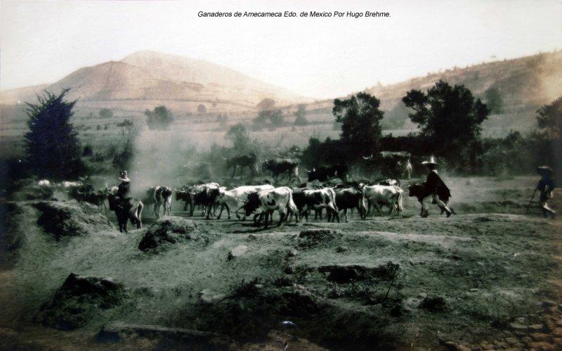 Ganaderos de Amecameca Edo. de Mexico Por Hugo Brehme.