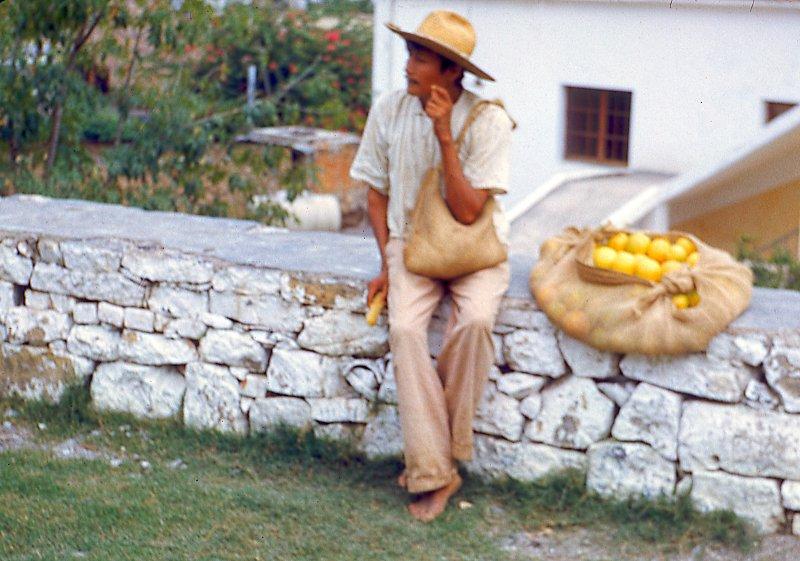 Vendedor de Naranjas (1953)