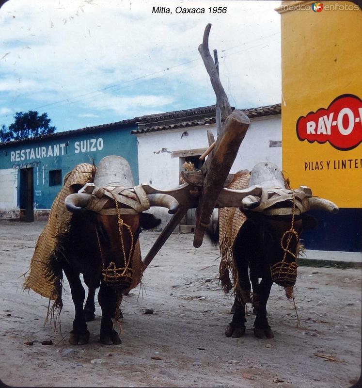 Mitla, Oaxaca 1956