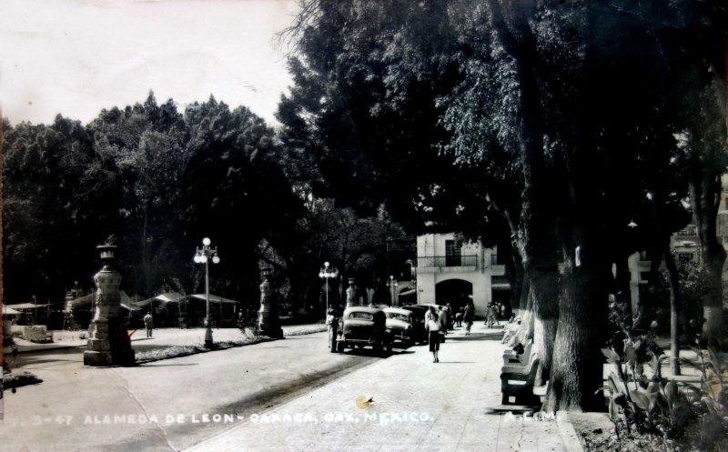La Alameda de Leon.