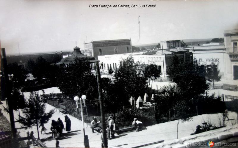 Plaza Principal de Salinas, San Luis Potosí