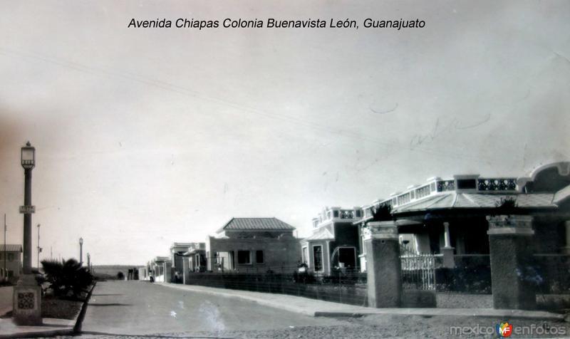 Avenida Chiapas Colonia Buenavista León, Guanajuato