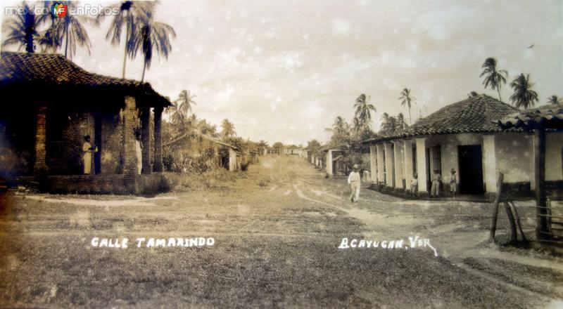 Calle Tamarindo.