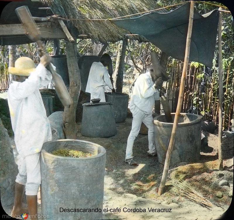 Descascarando el cafe Cordoba Veracruz.
