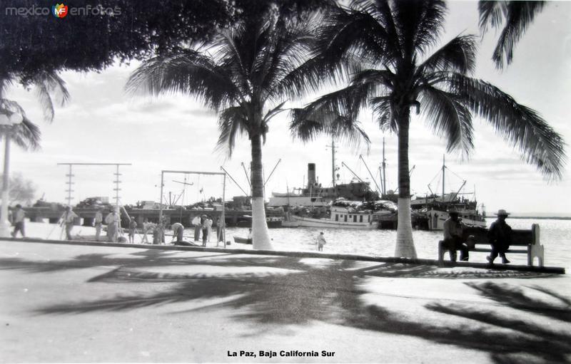 El Puerto de La Paz, Baja California Sur ( Circulada el 8 de Agosto de 1955 ).