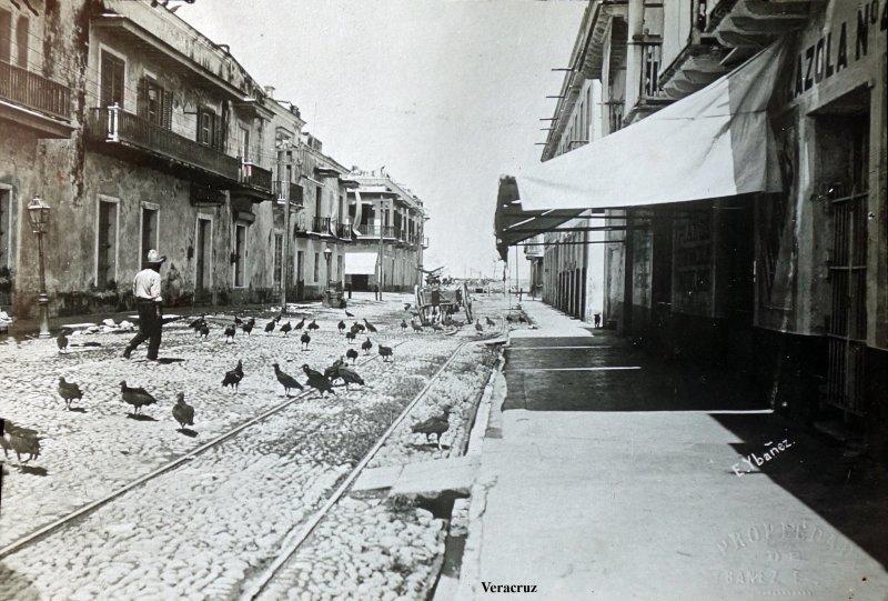Escena callejera con zopilotes.