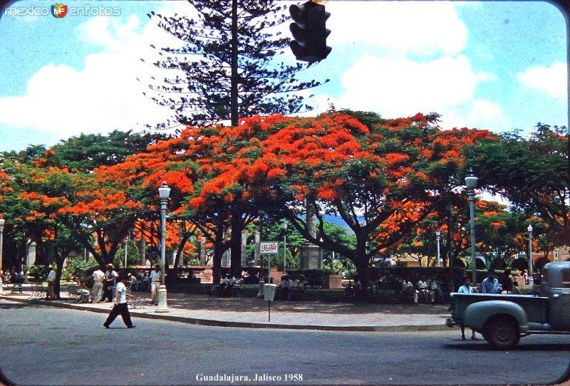 Una Plaza   Guadalajara, Jalisco 1958.