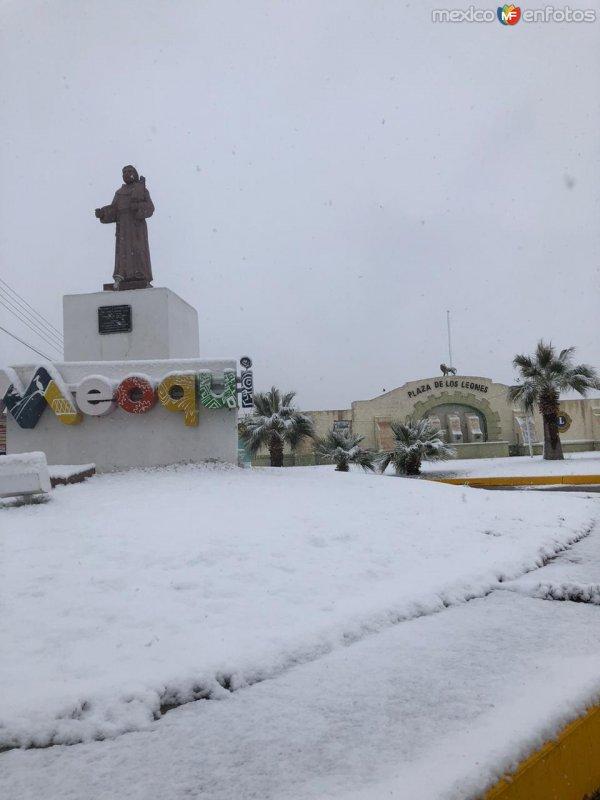 Cd Meoqui Chihuahua bajo la nieve.