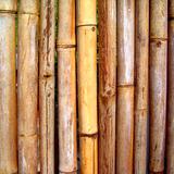 Cerco de Bambú