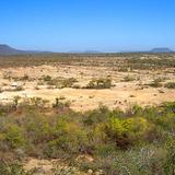 Valle de los Mamuts