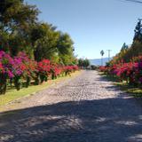 Caminos dentro de la antigua hacienda