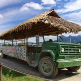 Vehículo tipo Safari