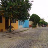 Calles de Colima