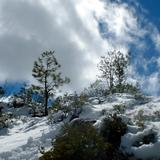 Paisaje nevado en Sisoguichi