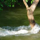 El Ojo de Agua