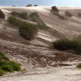 De paseo en los arenales