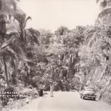 Carretera Tepic - San Blas